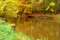 河。 图库摄影