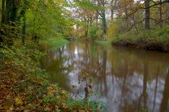 河。 库存图片