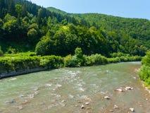 河一条风雨如磐的小河沿岩石海岸的,盖用一个密集的绿色森林在蓝色无云的天空下 一个地方 免版税库存图片