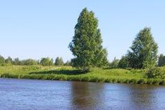 河与绿色新鲜的草的海岸在风的线和树 库存图片
