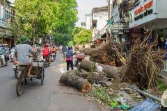 河内,越南- 2015年6月14日:下落的树在街道上在Minh Khai街道损坏了由自然重的风暴 图库摄影