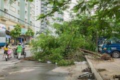 河内,越南- 2015年6月14日:下落的树在街道上损坏了由在金Nguu街道的自然重的风暴 免版税库存图片