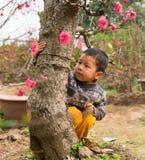 河内,越南- 2015年2月8日:使用在Nhat Tan桃子花园的未认出的孩子 桃子花是越南lun的标志 免版税库存图片
