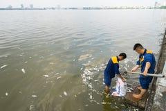 河内,越南- 2016年10月2日:垃圾收集工,环境工作者采取许多死的鱼从西湖 免版税库存图片