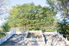 河南,中国- 2015年10月27日:坟茔东GuiFei (181-200) 一famo 免版税库存照片