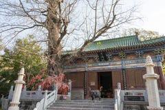 河南,中国- 2015年11月04日:永泰寺 著名历史的si 免版税图库摄影