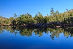 河反射 库存照片