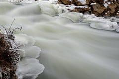 河向雪冰急流扔石头 免版税库存照片