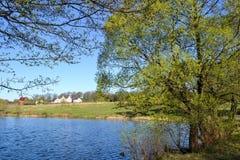 河和它的银行 沿水的双方的树 天空是多云的 免版税库存照片