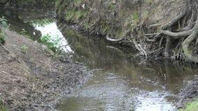 河和小河水仍然跑深深13 免版税库存图片