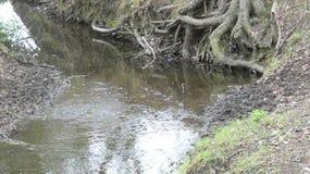 河和小河水仍然跑深深5 库存图片