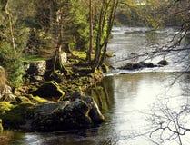 河和岩石银行在早moring的阳光下 免版税库存照片