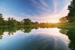 河和春天森林 免版税库存图片