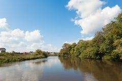 河和杨柳丛林银行的看法  库存图片
