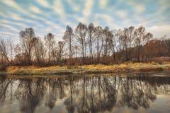 河和树在秋天早晨 库存照片