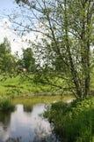 河和树 免版税库存图片