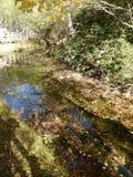 河和桥梁 免版税库存图片