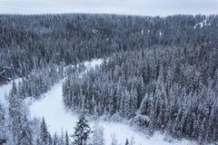 河和森林从高度 库存图片