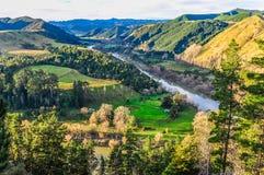 河和森林在旺格努伊国家公园,新西兰 库存图片