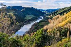 河和森林在旺格努伊国家公园,新西兰 图库摄影