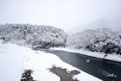 河和森林大雪  库存照片