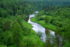 河和森林风景 免版税库存照片