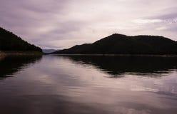 河和森林 免版税图库摄影