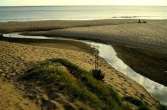 河和海 库存图片
