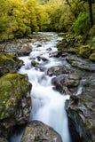 河和瀑布在峡谷, Milford Sound的看法 库存照片