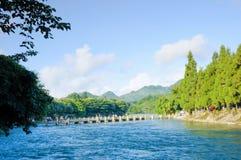 河和绿色树 库存图片