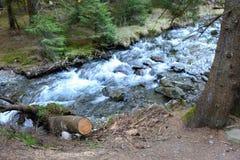 河和风景在特兰西瓦尼亚, Moeciu,罗马尼亚森林里  免版税库存图片