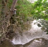 河和鸟房子 图库摄影
