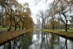 河在一个波兰公园 免版税库存图片