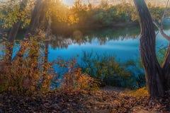 河在一个令人愉快的秋天森林里 免版税库存图片