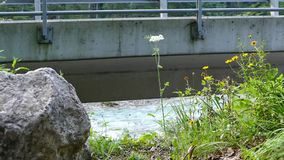 河在一座具体桥梁下 股票视频