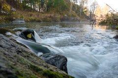河在俄罗斯,在乌拉尔,一条快的路线在秋天背景的森林 免版税库存图片