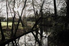 河在公园 库存照片