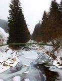 河在冬天森林, Spindleruv Mlyn 库存照片