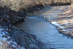 河在冬天科罗拉多 免版税库存图片