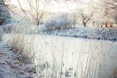 河在冬天 库存照片