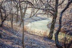 河在冬天 库存图片