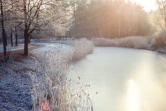 河在冬天 免版税库存图片