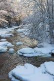 河在冬天 免版税库存照片
