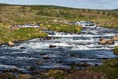 河在冰岛 免版税库存照片