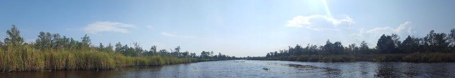 河在南卡罗来纳 免版税图库摄影