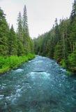 河在原野 免版税图库摄影