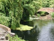 河在坎特伯雷 免版税库存照片