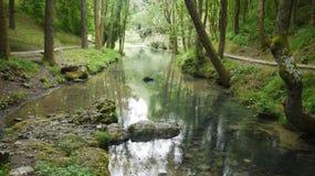 河在夏天 库存照片
