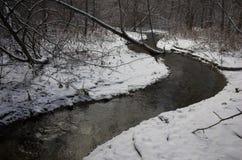 黑河在多雪的森林里 库存图片