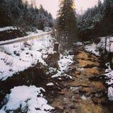 河在奥地利 免版税库存图片